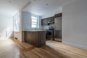 renovated one bedroom apartment - near Concordia / Downtown