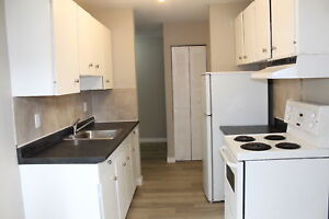 Pet-Friendly & Newly Renovated 1 Bedroom Suite $825/month