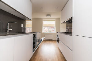 Fully renovated 1 bedroom victoria park / Eglinton