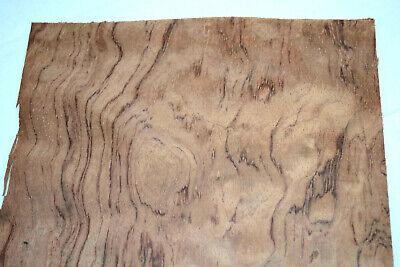 Bubinga Raw Wood Veneer Sheets 8 X 23 Inches African Rosewood   F8628-42