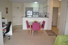 Fully furnished large spacious unit in Oasis Resort, Auchenflower Auchenflower Brisbane North West Preview
