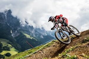 Looking for a downhill mountain bike