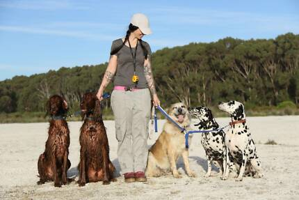 DOG TRAINING FROM $100 PER HOUR