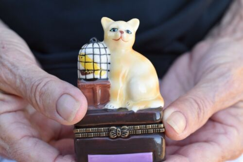Hinged Lid Trinket/Pill BoxTabby Cat Topper kitten, canary