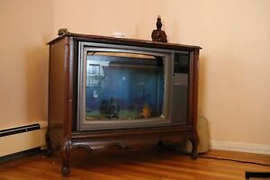 Fish Tank 30 gallon, TV style! Free deliver within Charlottetown