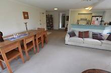 3 bdr unit 5 Mins from Sunshine Shops and Beach Sunshine Beach Noosa Area Preview