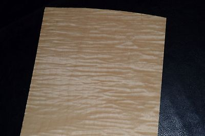 Curly Maple Raw Wood Veneer Sheets 6 X 36 Inches 142nd 8632-16