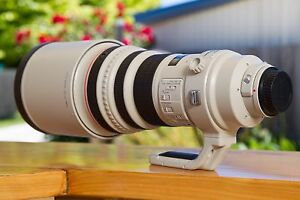 Canon 400mm F2.8 Lens Perth Northern Midlands Preview