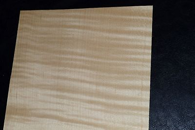 Curly Maple Raw Wood Veneer Sheets 5.5 X 31 Inches Blemished   8632-33