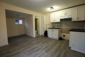 ALL-INCLUSIVE, Newly-Renovated Bachelor in Downtown Hamilton