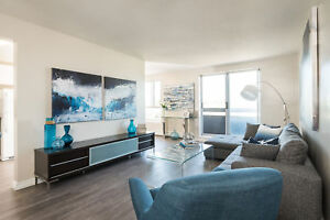 Renovated Two Bedroom Apartment in Kitchener - Won't Last Long!