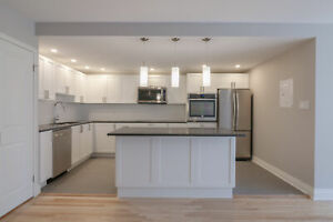 fully renovated 2 bedroom , 2 bathroom apartment  - Downtown