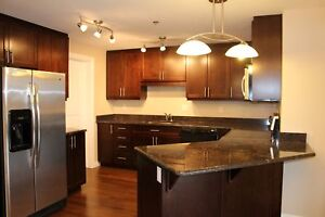 Lawson Heights - High End Condo! Over 1100 Sq. Ft!