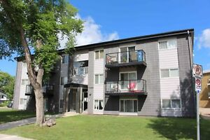 Pet Friendly! Massey Place - 2 Bedroom Condo! Renovated! Reduced