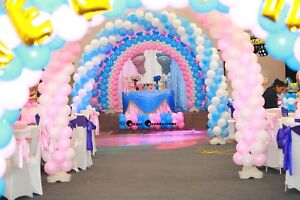 Birthday Party Balloon Decoration Party Hire Gumtree Australia