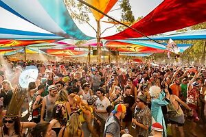 Rainbow serpent ticket and lift to and from festival Coburg Moreland Area Preview