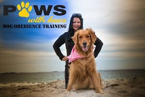Certified Dog Trainer-  Positive Reinforcement