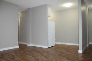 Renovated 1 Bedroom Apartments in Downtown / Beltline