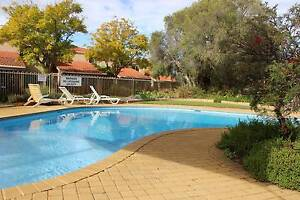 One Weeks Free Rent - $330PW - Furnished - Pool ! The Vines Swan Area Preview