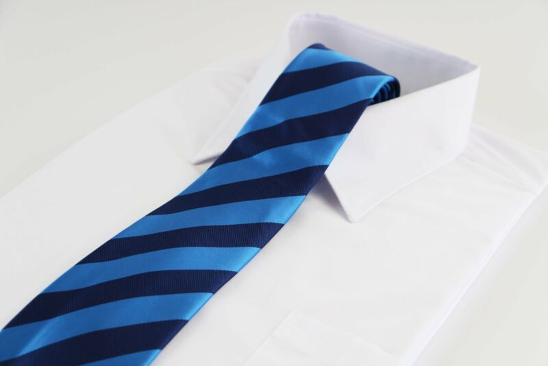 Mens Blue & Navy Thick Striped Patterned 8cm Neck Tie