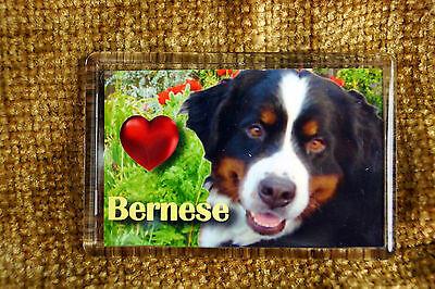 Bernese Mountain Dog Gift Dog Fridge Magnet 77x51mm Birthday Gift
