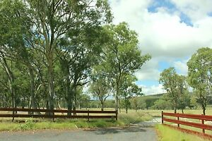 FIVE ACRES Tenterfield DWELLING ENTITLEMENT $11,000 Dep $165/week Tenterfield Tenterfield Area Preview