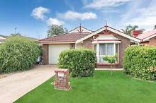 36 Parkview Drive, Blakeview Blakeview Playford Area Preview
