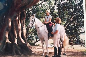 Horse Riding Lessons Kingscliff Tweed Heads Area Preview
