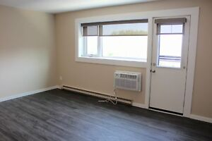 Renovated One Bedroom Suite in St. Boniface!