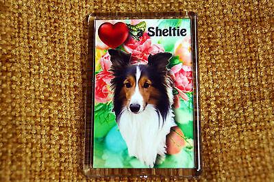 Sheltie Gift Dog Fridge Magnet 77 x 51 mm Shetland Sheepdog Birthday Gift