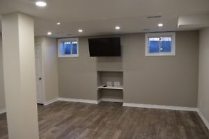 Finished basement start from 22