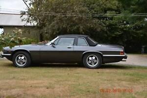 Magnificient 1985 Jaguar