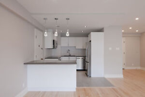 Fully Renovated Downtown One Bedroom suite - 3 1/2 centre-ville