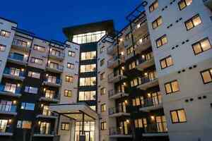 Brand New 2 Bedroom Apartments Beside Outlet Mall