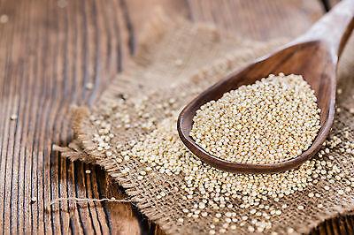 Quinoa - weiß Rohkost Glutenfrei Samen Inkakorn Reis der Inka