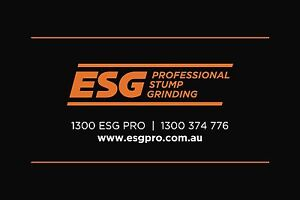 ESG - Professional Stump Grinding Chambers Flat Logan Area Preview