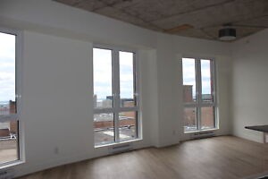 For,to,rent,Downtown,Centre Ville,McGill,21/2,studio,1,bedroom