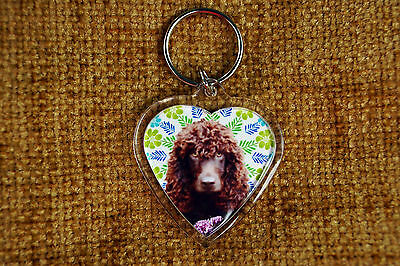 Water Spaniel Gift Keyring Dog Key Ring heart shaped gift Valentine