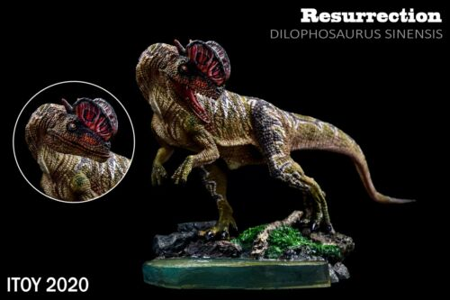 ITOY 2020 Dilophosaurus Statue Coelophysoidea Dinosaur Collector Animal Toy Gift