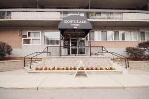 BACHELOR AVAILABLE NOVEMBER- CLOSE TO CARLETON & DOWNTOWN!