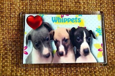 Whippet Gift Dog Fridge Magnet 77x51mm Birthday Gift Xmas Stocking Filler