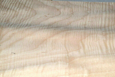 Curly Maple Raw Wood Veneer Sheets 8 X 33 Inches 142nd Thick   4712-27