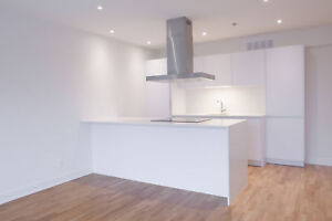 Downtown - brand new fully renovated 2 Bedroom  with washer/dry