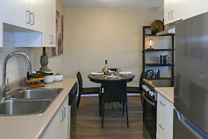 Beautifully Upgraded 2 Bedroom Apartments for Rent