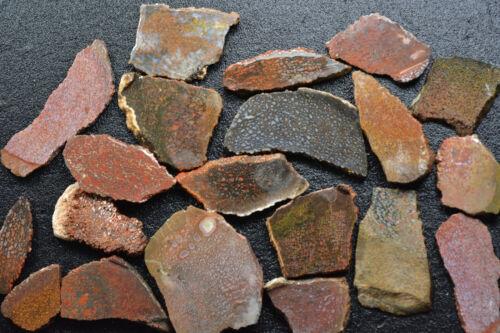 100 Grams of Agatized Dinosaur Bone Slabs