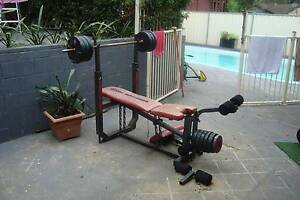Gym Weights Assorted Plates Dumbbells + Bench  (Nth Gosford) North Gosford Gosford Area Preview