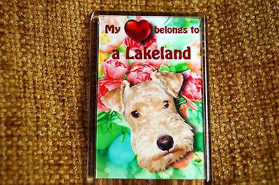 Lakeland Terrier Gift Dog Fridge Magnet 77 x 51 mm Xmas stocking filler