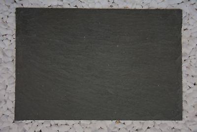 kante Deko Platte DIY Tablett Natur Tür Schild Tisch Basteln (Tischplatte Tafel)