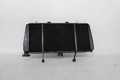 TRIUMPH 2002 2004 SPRINT RS ENGINE RADIATOR MOTOR COOLER WITH COOLING