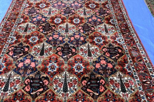 Beautiful Genuine Bakhtiyari Rug 7x10 Very Nice #599